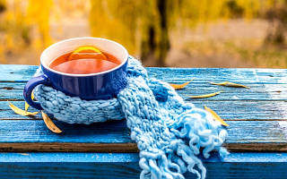 5 сортов чая, которые согреют вас этой осенью