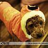 """Куртка """"Кристальная королева"""" для собак Is Pet. Одежда для собак, фото 6"""