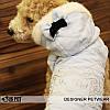 """Куртка """"Кристальная королева"""" для собак Is Pet. Одежда для собак, фото 5"""