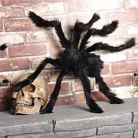Паук большой, меховой,размер лапок 23 см, туловище 14х8 см на хэллоуин, декор на вечеринку