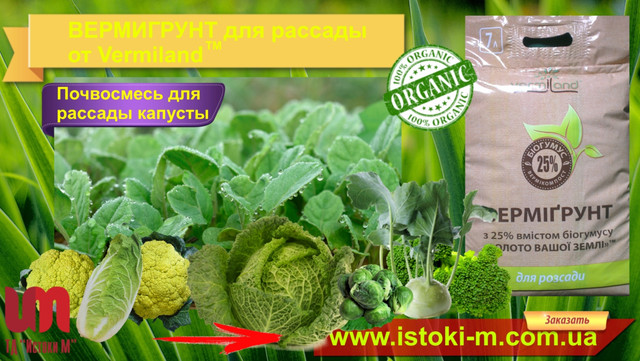 почвосмесь-грунт для рассады цветной капусты