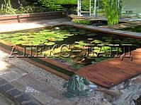 Пруд для водных растений