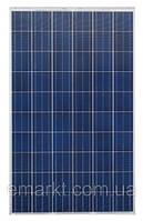 Солнечная батарея 250 Ватт 24 Вольта панель Solar поликристалл