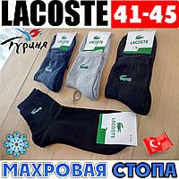 Махровая стопа носки мужские Lacoste Турция ассорти 41-45р. НМЗ-0404234