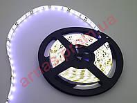 Светодиодная лента SMD-56-30 (60 Led/метр) 12 Вольт, силикон, цвет белый