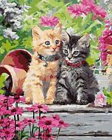 Картины по номерам 40×50 см. Котята в саду Художник Ричард Макнейл