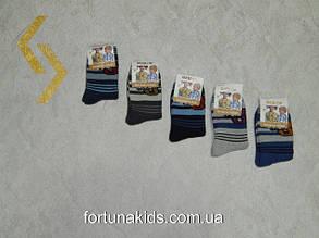 Махровые носочки для мальчиков AURO.VIA