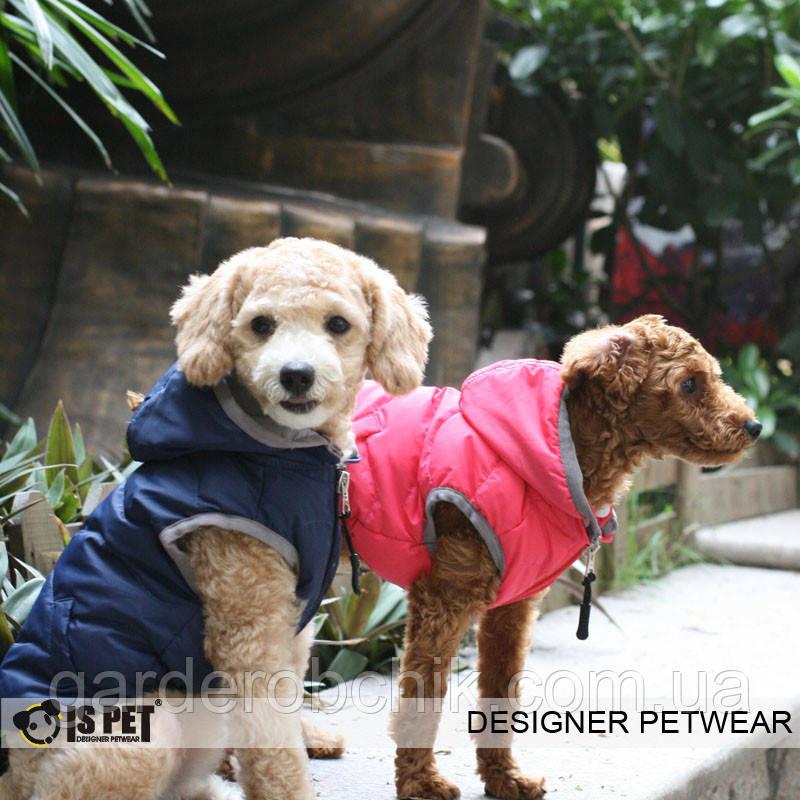 """Куртка """"Волна"""" для собак Is Pet. Одежда для собак"""