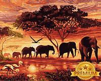 Картини по номерах 40×50 см. Babylon Premium Саванна