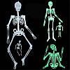 Скелет фосфорний підвісний 30 см світиться в темряві - декорація на хеллоуїн