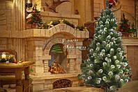 Елка Европейская рождественская с шишками
