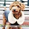 """Куртка джинсовая """"Роджер"""" для собак Is Pet. Одежда для собак, фото 5"""