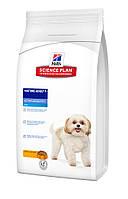 Hills SP  Canine Mature Adult 7+ Active Longevity Mini 3кг - корм для пожилых собак мини пород (6095)