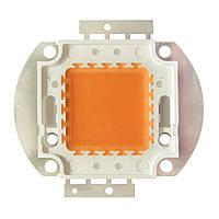 Фито светодиод полного спектра 50Вт, 400-840nm,30-34В, 1700мА 45mil, фото 1