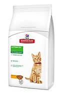 Hills Science Plan Kitten Healthy Development  корм для котят с курицей 2кг (8735)