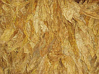 Ароматизатор «Cabin» Xian Taima табачный аромат (5 мл)