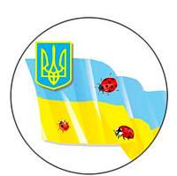 Значок сувенирный флаг Украины божья коровка