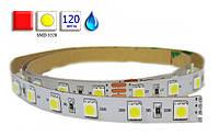 Светодиодная лента LED, SMD 3528, красный, 120 шт/м, влагозащищенная IP65 Код:72408806