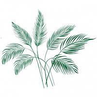 Виниловая Наклейка Palm Leaves Код:105701