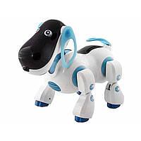 Собака на радіокеруванні та батарейці інтерактивний Космопес 905827R/2099 пісні+казки, в коробці 35х27х20с