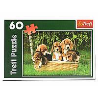 Пазли Trefl Маленькі біглі 60 елементів в коробці 17166