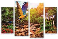 Модульная картина большой попугай