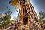 Экскурсионная Камбоджа , фото 4