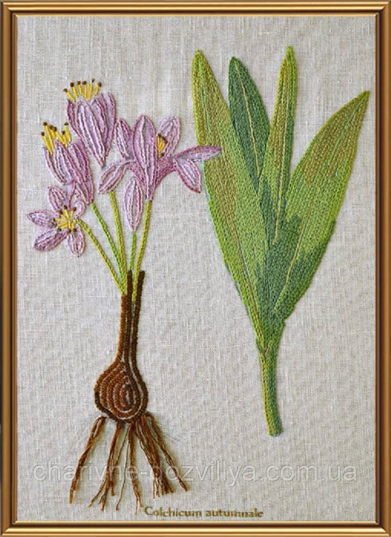 """Набор для вышивания смешанной техникой (нитки и бисер) """"Ботаника. Безвременник осенний"""""""