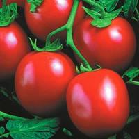 Семена томата детерминантного Велоз F1 Seminis 1 000 шт