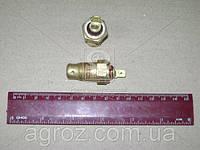 Датчик температуры охлаждающей жидкости ГАЗ 3102, 3110 (пр-во г.Калуга) ТМ111-02, фото 1