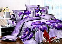 Комплект постельного белья из полисатина евроразмера 200х220 PS-HL135