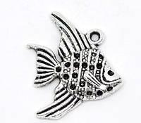 """Подвеска, 21 mm x 19 mm, """" Рыба """", Античное серебро, фото 1"""