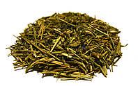 Дымянка лекарственная трава 100 грамм (Дикая рута)