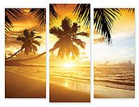 Модульная картина пальмы и солнце