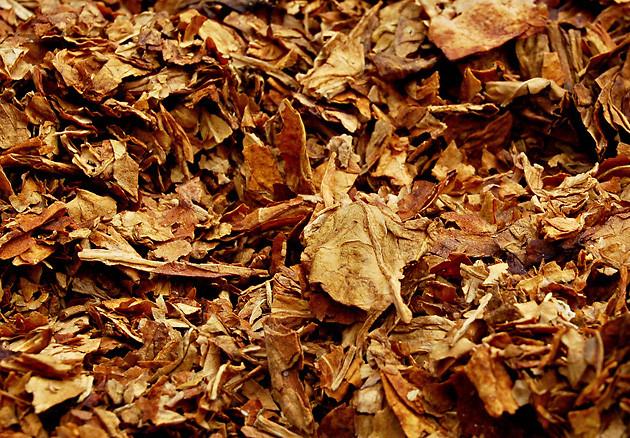 Ароматизатор «Golden Virginia» Xian Taima табачный аромат 50 мл