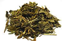 Будра обыкновенная трава, фото 1