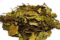Боровая матка трава 100 грамм (Ортилия однобокая)