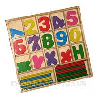 Математический набор для первоклассника, Дерево