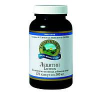 Лецитин NSP, улучшение функционирования мозга.
