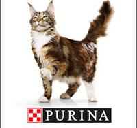 Purina (Gourmet Gold,Friskies,Felix,Pro Plan)