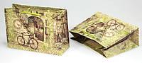 Крафтовый подарочный пакет PVCP181105