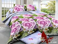 Семейный комплект постельного белья ранфорс R1698/2 ТМ TAG