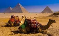 Отдых в Египте! Вылеты из Одессы с октября по май