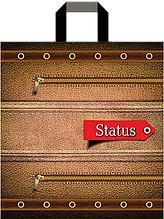 "Пакет петля ""Status""  (38х43+3)80 мкм 25шт/упаковка"
