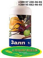 Инсектицид Залп (1 л.)