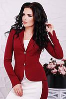 Пиджак Elvira PG-1543 (3цв) пиджак, классический пиджак, женский пиджак, приталенный пиджак
