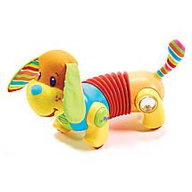 Інтерактивна іграшка «Tiny Love» (1502406830) щеня Фред, фото 3
