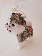 Собака Хаски (на батарейках) 22 см