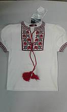 Вишиванка к/р дівч. SOfline 91-703, 164-84 біла з червоним