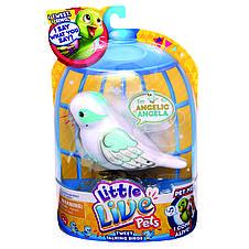 Интерактивная игрушка «Little Live Pets» (28018) птичка ангельская Анжела (Angelic Angela), фото 2